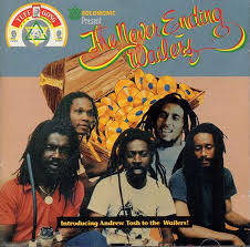 The Wailers - The Never Ending Wailers (1993, CD) | Discogs
