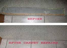 carpet repair pet damage in d c