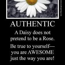 cute daisy quotes quotesgram daisy quotes flower quotes daisy