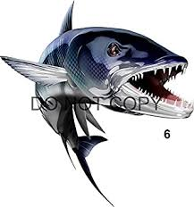 Amazon Com Barracuda Beautiful Fish Decal For Your Boat Vehicle Etc Many Sizes And Styles Available 12 To 40 6s Automotive
