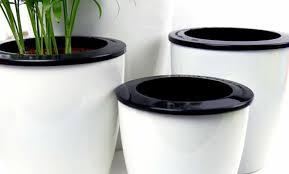 best self watering planters home mum