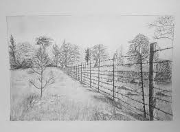 Fence Joel Murnan