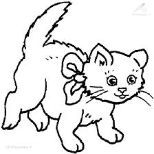 1001 Kleurplaten Dieren Kat Kleurplaat Kat