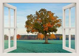 Tree Wall Decal 3d Window Wall Decal Tree Wall Sticker Tree Etsy