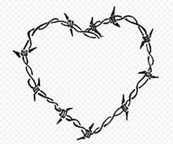 Barbed Wire Drawing Heart Others Leaf Outdoor Structure Electrical Wires Cable Pin Branch Png Nextpng