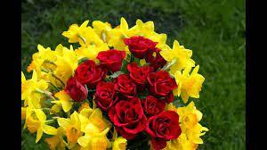 صور حلوه ورد اتفرج علي الزهور بين الحبايب تتكلم صور حلوه