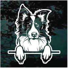 Border Collie Car Decals Stickers Decal Junky