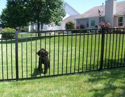 Install Puppy Picket For Your Furry Pal