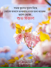 good morning quotes wishes messages images ferns n