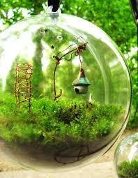 gardens in glass desiree thomson medium