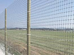 Poly Deer Fence Supplier