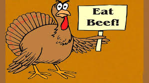 funny thanksgiving hd free wallpapers