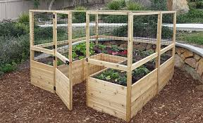 increase your vegetable garden yield
