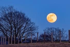full moon, super moon, moon, blue hour, moonlight, sky, lunar ...