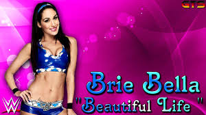 2016 brie bella wwe theme song