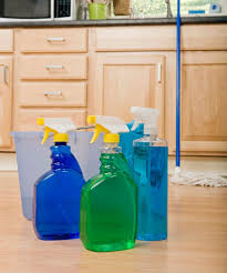 cleaning pet urine odors on floors