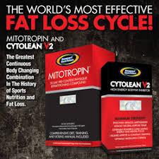 gaspari nutrition fat loss cycle