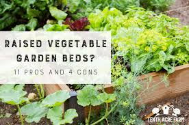 are raised vegetable garden beds right