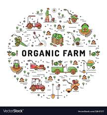 organic farm fresh line art vector image