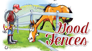 When It Comes To Horses Good Fences Make Good Neighbours