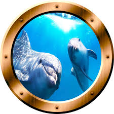 Dolphins Underwater Scene 3d Porthole Family Wall Art Ocean View 3d Window Bronze Portal Art Bp8 Wall Decal