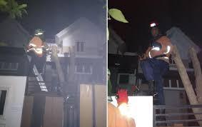 evakuasi sarang tawon cluster palazzo mutiara gading timur