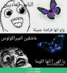 نكت وكوميكات مضحكة عن ميراكولوس Miraculous Arabic Amino