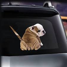 Buy Cheap Rear Wiper Dog Decal Low Prices Free Shipping Online Store Joom