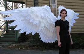 articulated wings tutorial how to