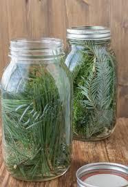 homemade pine vinegar healthy mama info