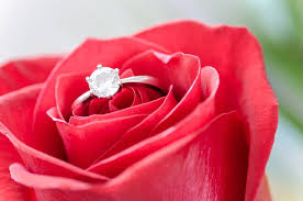 romantic red roses for a wedding