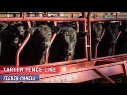 Tarter Fence Line Feeder Panels Youtube