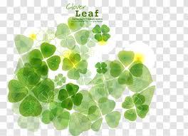 Four Leaf Clover Shamrock Transparent Png