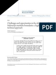 challenges and opportunities in the delimitation of s m