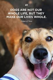best dog quotes cute sweet quotes about dogs