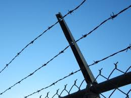 Average Price Per Foot For Barbed Wire Fence