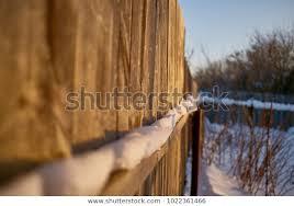 Garden Fence Sidewalk Plants Covered Snow Stock Photo Edit Now 1022361466