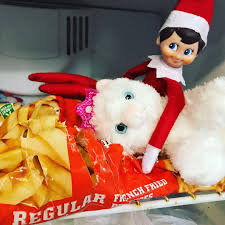 """Adele Dean on Twitter: """"Dwight Elf gave antihistamines to Sprinkles, put  her in the freezer & killed Angela's cat. Dwight doesn't see the use in  cats as they don't provide milk or"""