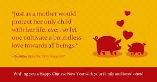 buddha quote chinese new year facebook post template