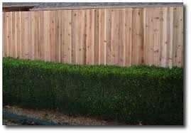 Cheap Bamboo Fencing Rolls 12 Foot Fence Panels