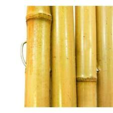 Bamboo Fence Panels For Sale In Stock Ebay