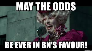 may the odds be ever in BN's favour! - Effie May The Odds | Meme Generator