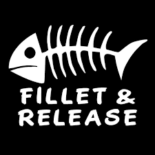2pcs Sticker Car Decal 15 2cm 11cm Vinyl Decal Fillet Release Fish Fishing Bones Lake Boat Sticker Fun Car Stickers Car Styling Black White Silver Red Size 6 6 Wish