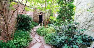 project pocket garden new york