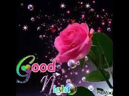 good night gif for whatsapp status