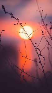 خلفيات موبايل Hd غروب الشمس للايفون مربع