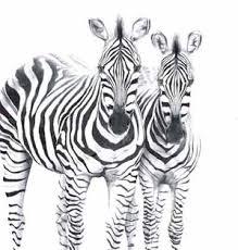 Резултат слика за наслеђивање и еволуција
