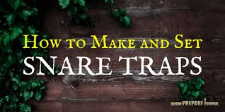how to make and set snare traps step