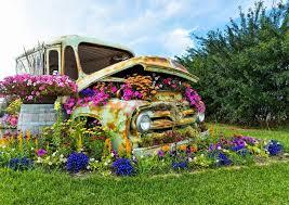 gardens image by michelle zinck