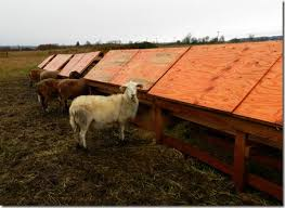 Premier Sheep Feeders With Mods And Lids The Collie Farm Blog